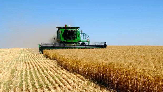 Ukraine-agriculture